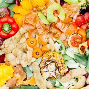 Bio déchets