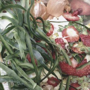 Bio déchets alimentaires - Fruits